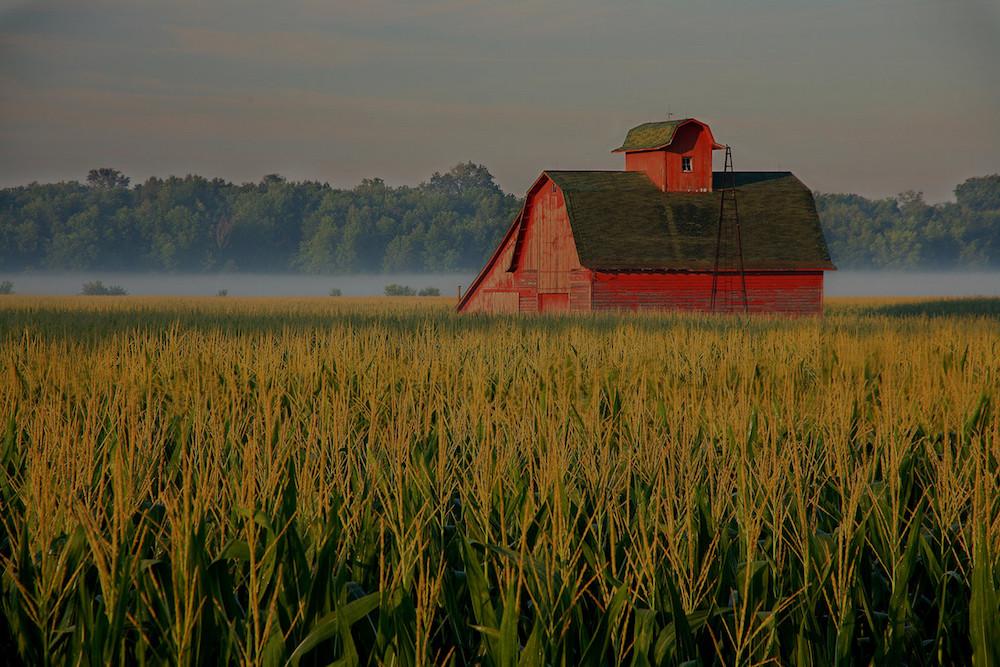 farm and crop insurance Camden TN